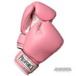 Boxing Gloves *NEW*